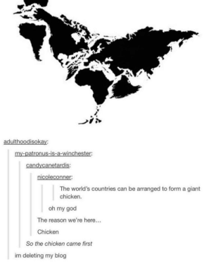 God, Oh My God, and Blog: adulthoodisokay:  my-patronus-is-a-winchester:  candycanetardis:  icoleconner.  The world's countries can be arranged to form a giant  chicken.  oh my god  The reason we're here...  Chicken  So the chicken came first  im deleting my blog The Chicken or the Egg