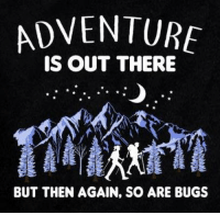 adventure is out there: ADVENTURE  IS OUT THERE  BUT THEN AGAIN, SO ARE BUGS