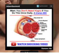 Traffic Junky: Advertisement  TRAFFICJUNKY  Men: You Don't Need Viagra if You  Do This Once Daily. It Cures ED!  Deep dorsal vein  Tunica albuginea  Corpus  Trabeculae  Cavemosal  spaces  artery  Septum  Corpus sponglosum  WATCH SHOCKING VIDEO  Remove Ads