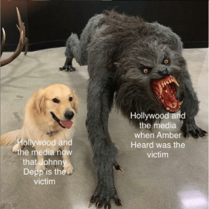 advice-animal:  It just ain't fair: advice-animal:  It just ain't fair