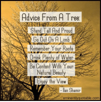 Pass it on... :): Advice From A Tree  Stand Tall And Proud  Go Out On A Limb  Remember Your Roots  Drink Plenty of Water  Be Content With Y  Our  Natural Beauty  Enjoy the View  Ilan Shamir  eminentlyquotable.com Pass it on... :)