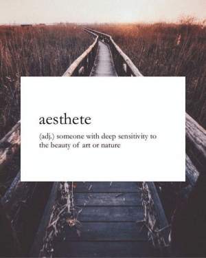 Nature, Art, and Deep: aesthete  (adj.) someone with deep sensitivity to  the beauty of art or nature