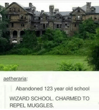 charmed: aetheraria:  Abandoned 123 year old school  WIZARD SCHOOL. CHARMED TO  REPEL MUGGLES.