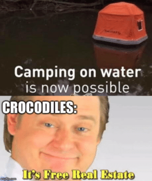 Af, Free, and Water: AF  Camping on water  is now possible  CROCODILES  It's Free Real Estate  tngfp.com Whaaaat