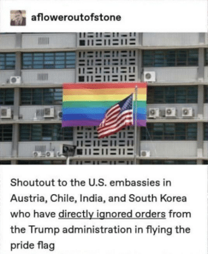 Proud of all of them ❤️: afloweroutofstone  H11E11E  1EDE  Shoutout to the U.S. embassies in  Austria, Chile, India, and South Korea  who have directly ignored orders from  the Trump administration in flying the  pride flag Proud of all of them ❤️