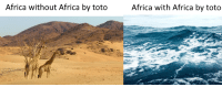 Africa, Reddit, and Too Much: Africa without Africa by toto  frica with Africa by toto