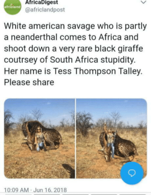 Africa, Savage, and American: AfricaDigest  africland  @africlandpost  White american savage who is partly  a neanderthal comes to Africa and  shoot down a very rare black giraffe  coutrsey of South Africa stupidity.  Her name is Tess Thompson Talley.  Please share  10:09 AM Jun 16, 2018 Level of stupidity 9000