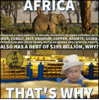 Africa, Ali, and Facebook: AFRICAL  AFRICA HAS A LARGE QUANTITY OF NATURAL RESOURCES,INCLUDING DIAMONDs, GoLD,  IRON, COBALT, SALT, URANIUM, COPPER, BAUXITE, SILVER,  PETROLEUM AND COCOA BEANS, BUT ALSO WOODS AND TROPICAL FRUITS,  ALSO HAS A DEBT OF $295 BILLION, WHY?  IG/FB  HOLISTIC  ALI  THAT S WA Follow ➡️ @holisticali Truth. How is Africa as a continent in debt when they have the largest amount of resources? Questions you need you ask. HolisticAli Africa Queen Oppression IG 👉🏽 @realrawtruth FACEBOOK-YOUTUBE-SNAPCHAT 👉🏽 @holisticali SUBSCRIBE TO NEW YOUTUBE LINK IN BIO