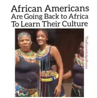 Africa, Memes, and Dreamchasers: African Americans  Are Going Back to Africa  To Learn Their Culture This video will make your hearts overjoyed. Black people need to know their roots. Blacktivist hotnews black blackis africanamerican blacklivesmatter blackman westandtogether altonsterling philandocastile blackpower proudtobeblack blackbusiness blackunity melanin icantbreath neverforget blackpride blackandproud dreamchasers blackgirls blackwomen sayhername