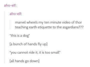 "Elf, Earth, and Marvel: afro-elf:  afro-elf  marvel where's my ten minute video of thor  teaching earth etiquette to the asgardians???  ""this is a dog  a bunch of hands fly upl  ""you cannot ride it, it is too smallt""  all hands go down] Guys"