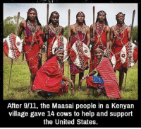 In terms of currency, 14 cows is a fortune to them btw: After 9/11, the Maasai people in a Kenyan  village gave 14 cows to help and support  the United States. In terms of currency, 14 cows is a fortune to them btw