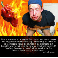 ghost peppers: After a man ate a ghost pepper in a contest, not even a burger  and six glasses of water could stop the burning. He ended up  in the hospital with a 2.5 cm hole in his esophagus-not  from the pepper, but from the extreme vomiting it caused. 23  days later, he was discharged with a gastric tube that  delivers food directly to his stomach.  Weird World