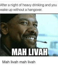 Drinking, Life, and Memes: After a night of heavy drinking and you  wake up without a hangover.  MAH LIVAH  Mah livah mah livah <p>The best things in life are free</p><p><b><i>You need your required daily intake of memes! Follow <a>@nochillmemes</a> for help now!</i></b><br/></p>