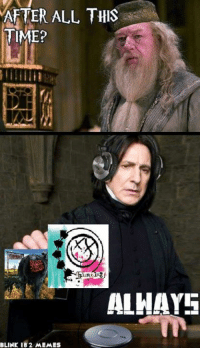 Harry Potter And The Order Of The Pop-Punk -Mac: AFTER ALL THIS  TIME?  ALMAYS  BLINK 182 MEMEs Harry Potter And The Order Of The Pop-Punk -Mac