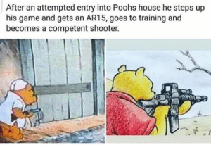 pooh knows... 'pie' that corner: After an attempted entry into Poohs house he steps up  his game and gets an AR15, goes to training and  becomes a competent shooter. pooh knows... 'pie' that corner
