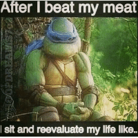 Beat My Meat: After beat my meat  sit and reevaluate my life like.