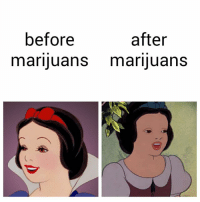 Marijuans: plz not even once!!!!!!!: after  before  marijuans marijuans Marijuans: plz not even once!!!!!!!