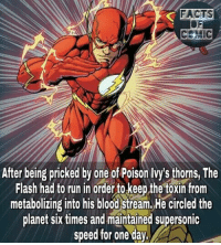 dccinematicuniverse dccomics dcuniverse dcevents dcentertianment justiceleague flash flashpoint dcfacts flashfacts flashfamily like4like commentforcomment factsofcomics facts: After being pricked by one of Poison Ivy's thorns, The  Flash had to run in order to keep the toxin from  metabolizing into his blood stream, He circled the  planet six times and maintained supersonic  speed for one day. dccinematicuniverse dccomics dcuniverse dcevents dcentertianment justiceleague flash flashpoint dcfacts flashfacts flashfamily like4like commentforcomment factsofcomics facts