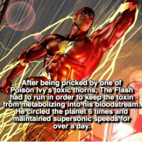 sheeesh 😵😋 follow @marvelouspost: After being pricked by one of  Poison Ivy's toxic thorns, The Flash  had to run in order to keep the toxin  from metabolizing into his bloodstream  He circled the planet 6 times and  maintained supersonic speeds for  over a day. sheeesh 😵😋 follow @marvelouspost