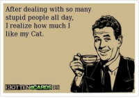 Yep!! Via The Cat House On The Kings.com: After dealing with so many  stupid people all day,  I realize how much I  like my Cat  USER  ROTTEN eCARDS  CARD Yep!! Via The Cat House On The Kings.com