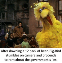 memes dankmemes moist: After downing a 12 pack of beer, Big-Bird  stumbles on camera and proceeds  to rant about the government's lies. memes dankmemes moist