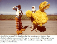 Big bird has a money problem: After failing to pay off his drug loan, Big Bird wound up on a Mexican drug  plantation. Cartel members took his legs as payment for the debt, using them as  pants. Meanwhile, other members of the c  were preparing a fire, roasted  poultry was their favorite Big bird has a money problem