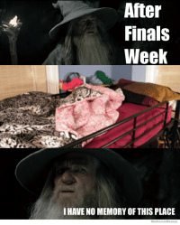 It's been a long week: After  Finals  Week  I HAVE NO MEMORY OF THIS PLACE  Wekno Memes It's been a long week
