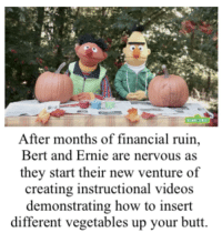 Butt, Videos, and How To: After months of financial ruin,  Bert and Ernie are nervous as  they start their new venture of  creating instructional videos  demonstrating how to insert  different vegetables up your butt.