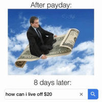 Memes, Live, and World: After pavda  8 days later:  how can i live off $20 A whole new world