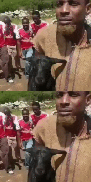 After seeing Man Utd fans juju work for the game against Man City, Arsenal fans are now trying the same.  https://t.co/4Sf7AS379P: After seeing Man Utd fans juju work for the game against Man City, Arsenal fans are now trying the same.  https://t.co/4Sf7AS379P