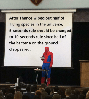 Or being calculated in other ways by Pharah_is_my_waIfu MORE MEMES: After Thanos wiped out half of  living species in the universe,  5-seconds rule should be changed  to 10-seconds rule since half of  the bacteria on the ground  disppeared. Or being calculated in other ways by Pharah_is_my_waIfu MORE MEMES