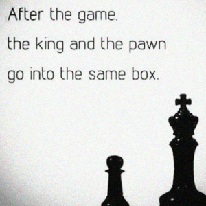 The Game, Tumblr, and Blog: After the game.  the king and the pawn  go into the same box. srsfunny:In The End We Are All The Same