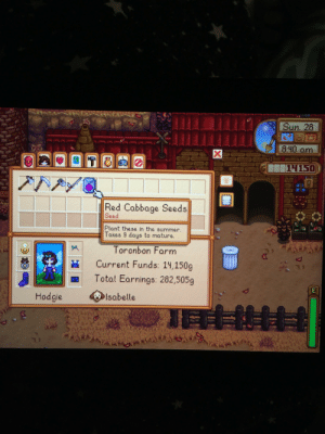 After weeks of checking the merchant cart, I finally got the seeds! I'm speed running the community centre so I think I can actually finish by end of winter year 1: After weeks of checking the merchant cart, I finally got the seeds! I'm speed running the community centre so I think I can actually finish by end of winter year 1