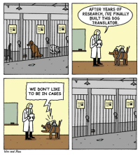 "Translator, Dog, and Com: AFTER YEARS OF  RESEARCH, I'VE FINALLY  BUILT THIS DOG  TRANSLATOR.  WE DON'T LIKEE  TO BE IN CAGES  War and Peao <p>Goodboye speaks up</p>  <a href=""https://warandpeas.com/"">https://warandpeas.com/</a>"