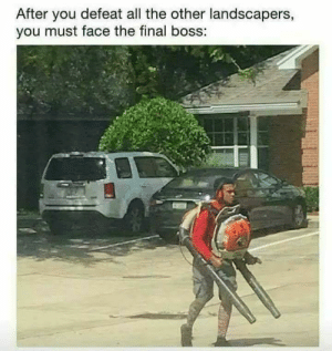 Final Boss, All The, and Boss: After you defeat all the other landscapers,  you must face the final boss: The Final Boss