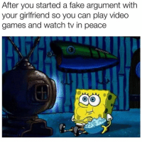 Fake, Funny, and Video Games: After you started a fake argument with  your girlfriend so you can play video  games and watch tv in peace  @ralphc  ocks Peace at last 😏