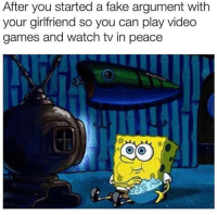 Fake, Video Games, and Games: After you started a fake argument with  your girlfriend so you can play video  games and watch tv in peace Whatever works🤷♂️😂