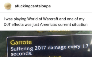 2017 damage: afuckingcantaloupe  I was playing World of Warcraft and one of my  DoT effects was just America's current situation  Garrote  Suffering 2017 damage every 1.7  seconds. 2017 damage