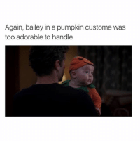"""Honestly 😍😍😍😍 greysanatomy (I know """"costume"""" is spelt wrong, I didn't make this): Again, bailey in a pumpkin custome was  too adorable to handle Honestly 😍😍😍😍 greysanatomy (I know """"costume"""" is spelt wrong, I didn't make this)"""