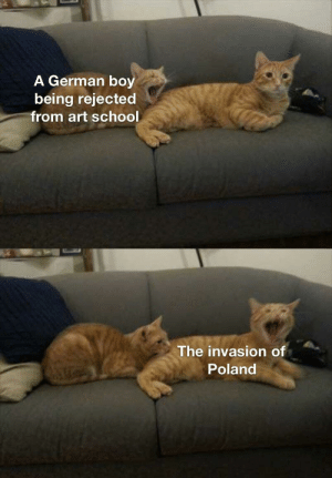 Again with the Hitler memes: Again with the Hitler memes