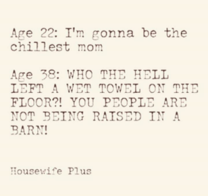 Via: Housewife Plus: Age 22: I'm gonna be the  chillest mom  Age 38: WHO THE HELL  LEFT A WET TOWEL ON THE  FLOOR?! YOU PEOPLE ARE  NOT BEING RAISED IN A  BARN!  Housewife Plus Via: Housewife Plus