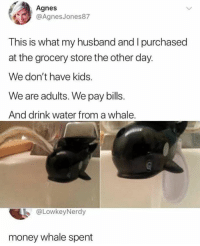 "Memes, Money, and Kids: Agnes  @AgnesJones87  This is what my husband and I purchased  at the grocery store the other day.  We don't have kids.  We are adults. We pay bills  And drink water from a whale  @LowkeyNerdy  money whale spent <p>Never grow up. via /r/memes <a href=""https://ift.tt/2G8FOKj"">https://ift.tt/2G8FOKj</a></p>"