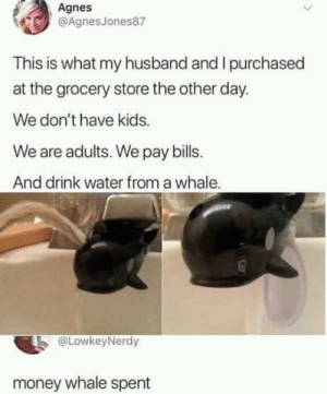 Club, Money, and Tumblr: Agnes  @AgnesJones87  This is what my husband and I purchased  at the grocery store the other day.  We don't have kids.  We are adults. We pay bills.  And drink water from a whale  @LowkeyNerdy  money whale spent laughoutloud-club:  What an overwhaleming situation