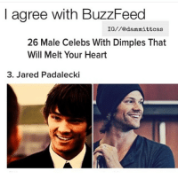 Comment on my this crush (I only have it to read funny comments 😂): agree with BuzzFeed  IG//edam mittcas  26 Male Celebs With Dimples That  Will Melt Your Heart  3. Jared Padalecki Comment on my this crush (I only have it to read funny comments 😂)