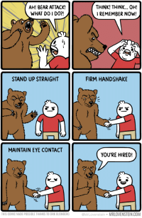 "Bear, Eye, and Com: AH! BEAR ATTACK!  WHAT DO I DO?!  THINK! THINK.. Oh!  REMEMBER NOW!  STAND UP STRAIGHT  FIRM HANDSHAKE  MAINTAIN EYE CONTACT  YOU'RE HIRED!  THIS COMIC MADE POSSIBLE THANKS TO ERIK BLOMBERG  @MrLovenstein MRLOVENSTEIN.COM <p>When you see a bear&hellip; via /r/wholesomememes <a href=""https://ift.tt/2IbprxD"">https://ift.tt/2IbprxD</a></p>"