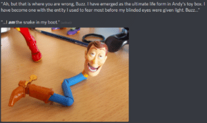 "meirl by Dio_Ludicolo MORE MEMES: Ah, but that is where you are wrong, Buzz. I have emerged as the ultimate life form in Andy's toy box. I  have become one with the entity I used to fear most before my blinded eyes were given light. Buzz...""  ""..l am the snake in my boot.""  edited) meirl by Dio_Ludicolo MORE MEMES"