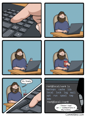 I am not lazy, I just save energy 😑: Ah, finally!  root@local/var# 1s  backups cache lib  local lock log mail  opt run spool tmp  root@local:/var#  I knew I had  an 1s somewhere in  my history  CommitStrip.com I am not lazy, I just save energy 😑
