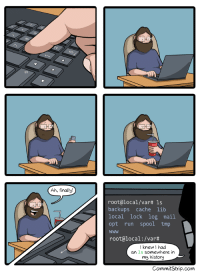 Run, Cache, and History: Ah, finally!  root@local/var# ls  backups cache lib  local lock log mail  opt run spool tmp  Www  root@local : /var#  Iknew I had  an ls somewhere in  my history  CommitStrip.com Bash history is always there when you need it