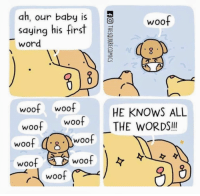 Word, Baby, and Woo: ah, our baby is  saying his first  word  woo  woof woof  HE KNOWS ALL  woo THE WORDS!!  woof s  woof Smol doggos first words
