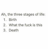 """Girl Memes, Deaths, and Three: Ah, the three stages of life:  1 Birth  2. What the fuck is this  3. Death """"What the actual fuck"""" - my constant inner monologue @mybestiesays"""